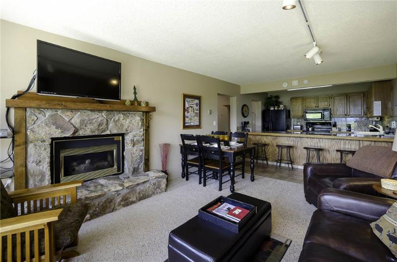 Bronze Tree Condominiums - BT105 - Image 1 - Steamboat Springs - rentals