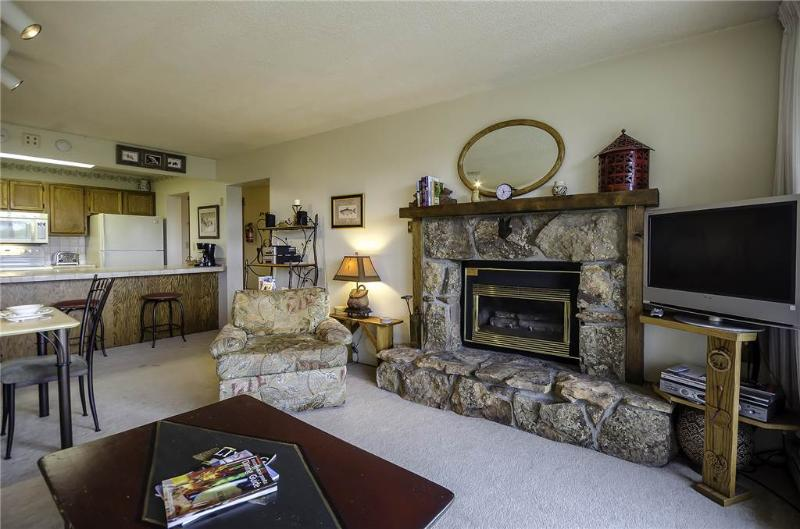 Bronze Tree Condominiums - BT202 - Image 1 - Steamboat Springs - rentals