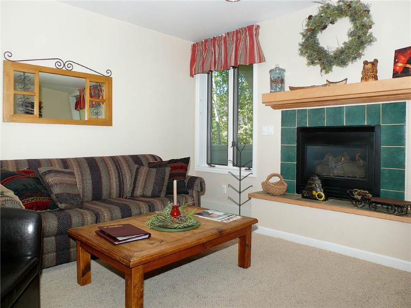 Terraces at EagleRidge - TRN22 - Image 1 - Steamboat Springs - rentals