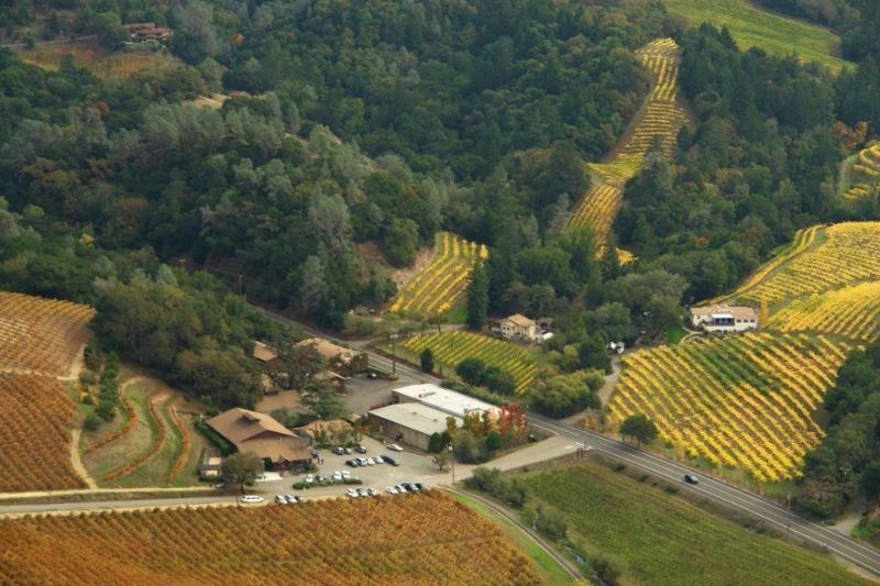 Sapphire Canyon Vineyard Guest House - Image 1 - Geyserville - rentals