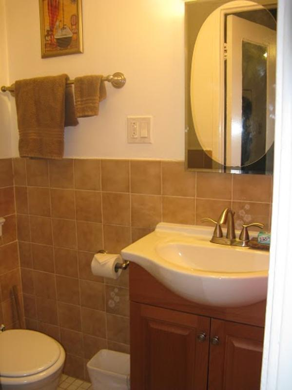 Beautiful Studio Apartment With Kitchen - Gold Coast, Chiacgo - Image 1 - Chicago - rentals