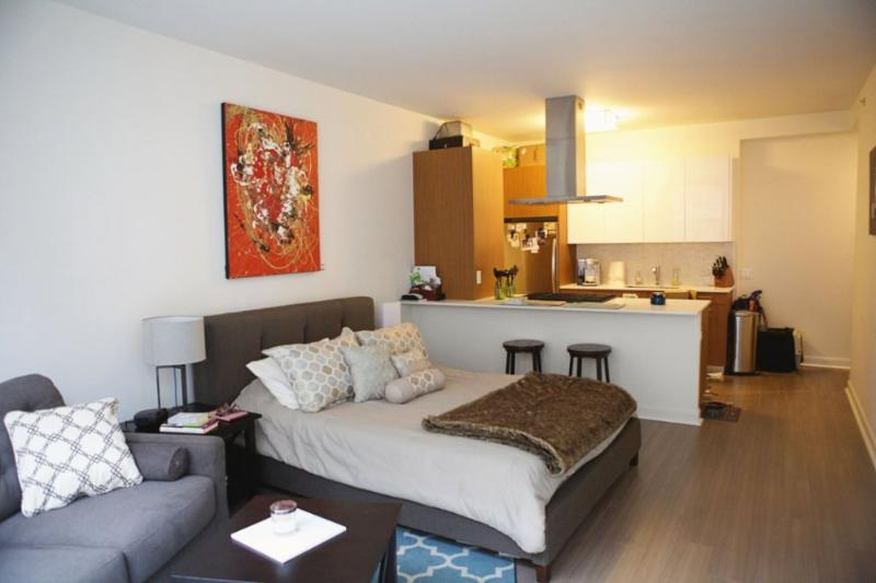 BEAUTIFULLY FURNISHED AND SPACIOUS STUDIO - Image 1 - Chicago - rentals