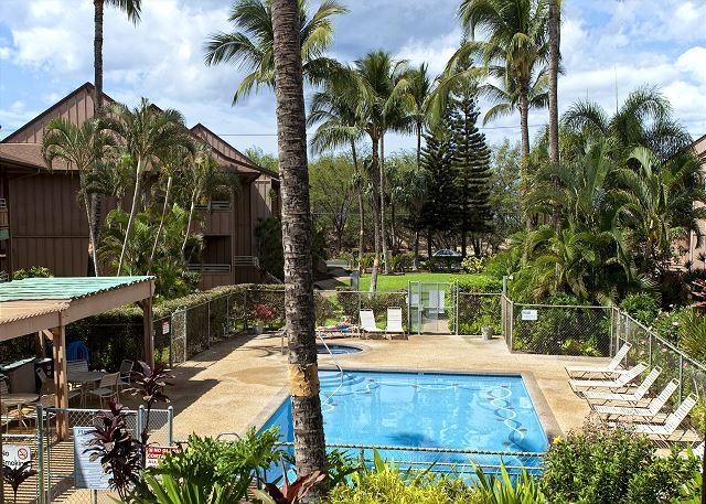 Kihei Bay Vista #D-209  is steps to the beach and has great rates!! - Image 1 - Kihei - rentals