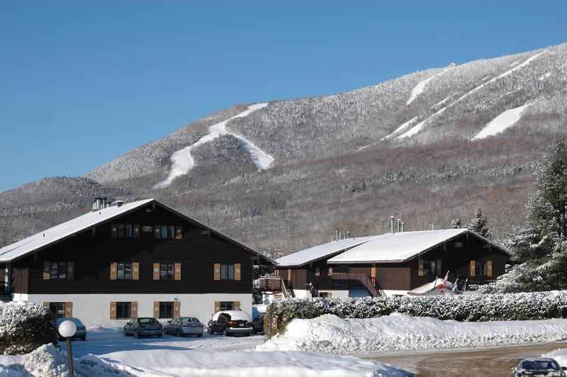 Chalets Montmorency Swiss-style buildings 800 meters from Mont-Sainte-Anne. - VIEWS of MONT STE- ANNE commute to OLD QUEBEC CITY - Quebec City - rentals