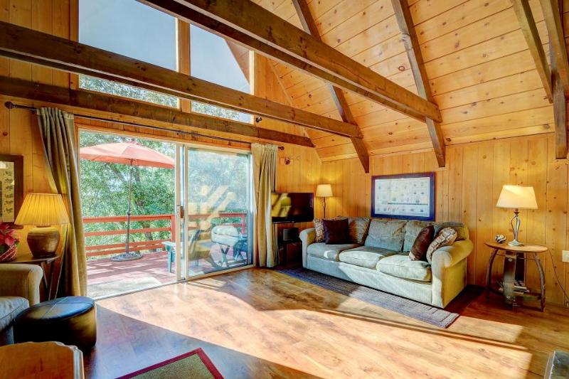 Heavenly, dog-friendly A-Frame with several decks - it's like two cabins in one! - Image 1 - Idyllwild - rentals