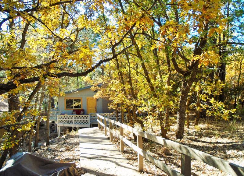 Leaves turning! - Modern-Rustic Retreat Home Near Downtown Flagstaff - Flagstaff - rentals