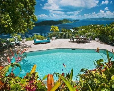 Amazing 4 Bedroom Villa on St Thomas - Image 1 - Saint Thomas - rentals
