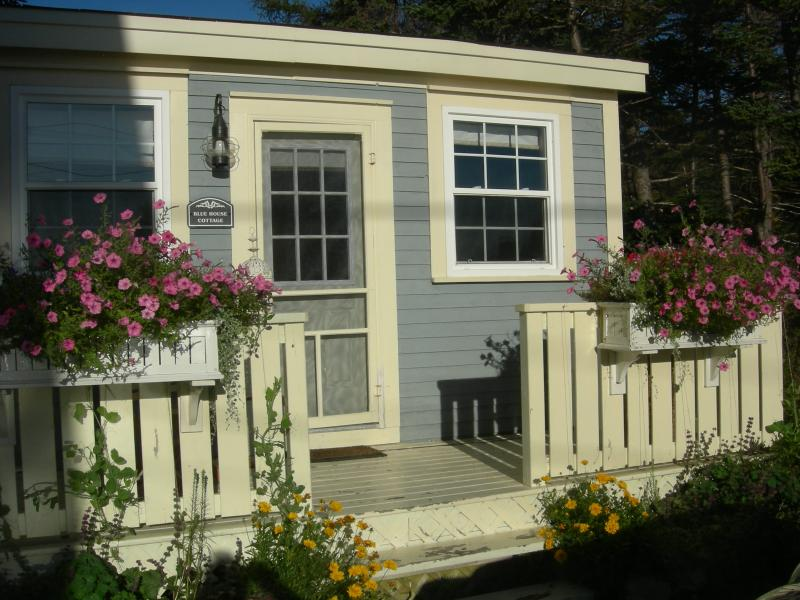 Beautiful Bluehouse Garden - Hikers Paradise Blue House Cottage near St. John's - Tors Cove - rentals