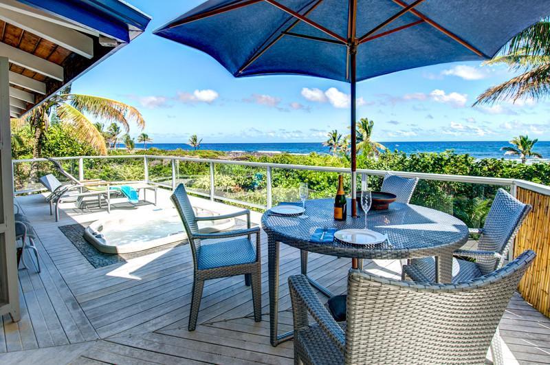 Oceanfront Orchid Oasis - Oceanfront Orchid Oasis - Pahoa - rentals