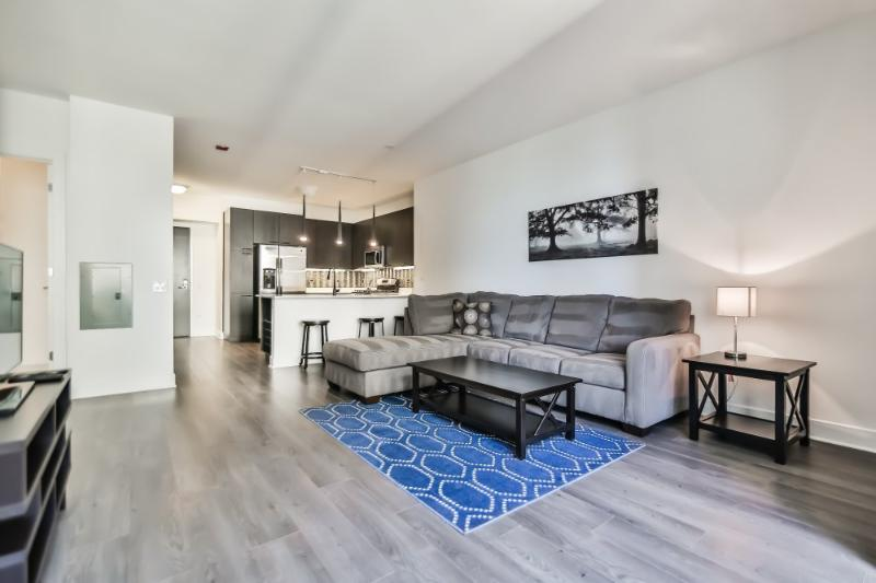 BEAUTIFULLY FURNISHED AND CLEAN 1 BEDROOM, 1 BATHROOM APARTMENT - Image 1 - Chicago - rentals