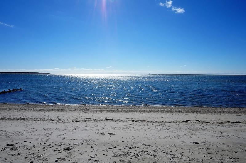 70 Ocean Avenue - Image 1 - Hyannis Port - rentals