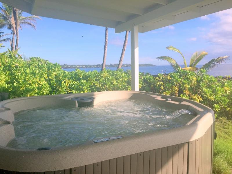 Oceanfront 3 Bedroom Alohahouse on the Puna Coast! - Image 1 - Keaau - rentals