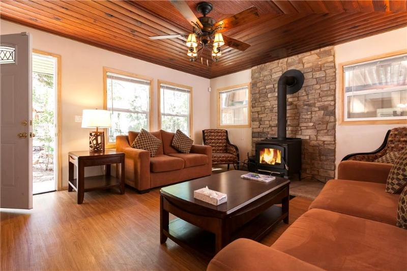 """Da'Kine"" - Image 1 - City of Big Bear Lake - rentals"