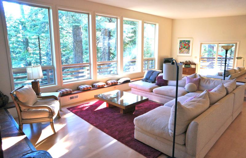 bright & light filled wall of windows in main living area - Big Trees Premium Mountain Retreat - Arnold - rentals