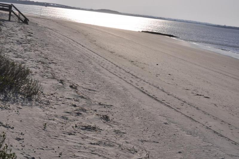 *TYBEE ISLAND,BEACH & SAVANNAH ! 999.00@Week!!! - Image 1 - Tybee Island - rentals