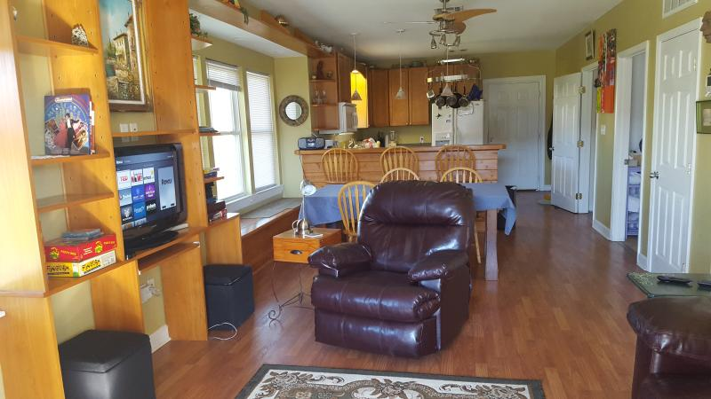 living room - Creole Cottage: safe, convenient, wifi - New Orleans - rentals