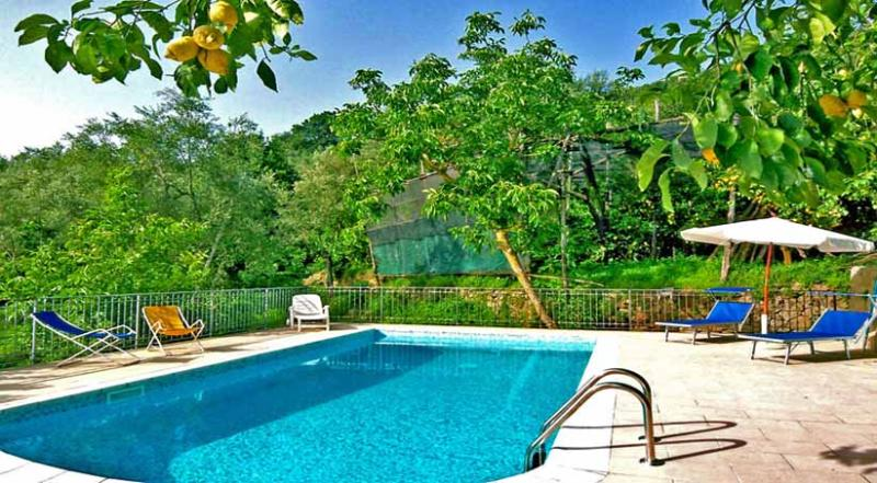 01 La Vigna shared pool area - LA VIGNA Massa Lubrense - Sorrento area - Massa Lubrense - rentals