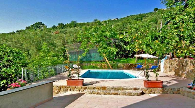 01 Gioia shared pool area - GIOIA Massa Lubrense - Sorrento area - Massa Lubrense - rentals