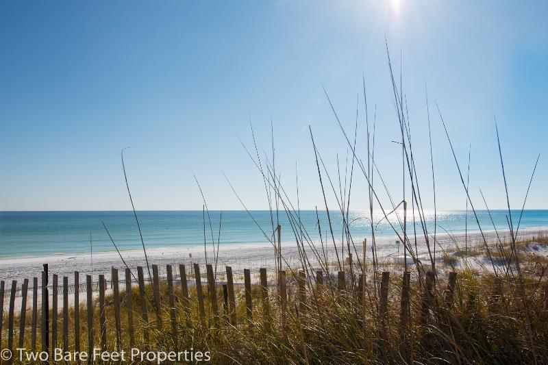 Mother Nature - 1 Bedroom Gulf View Condo - Stunning VIEW! - Miramar Beach - rentals