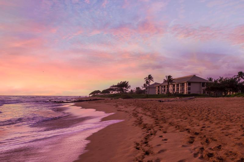 On the Beach, Central to Everything, Ohana Feel - Image 1 - Lihue - rentals