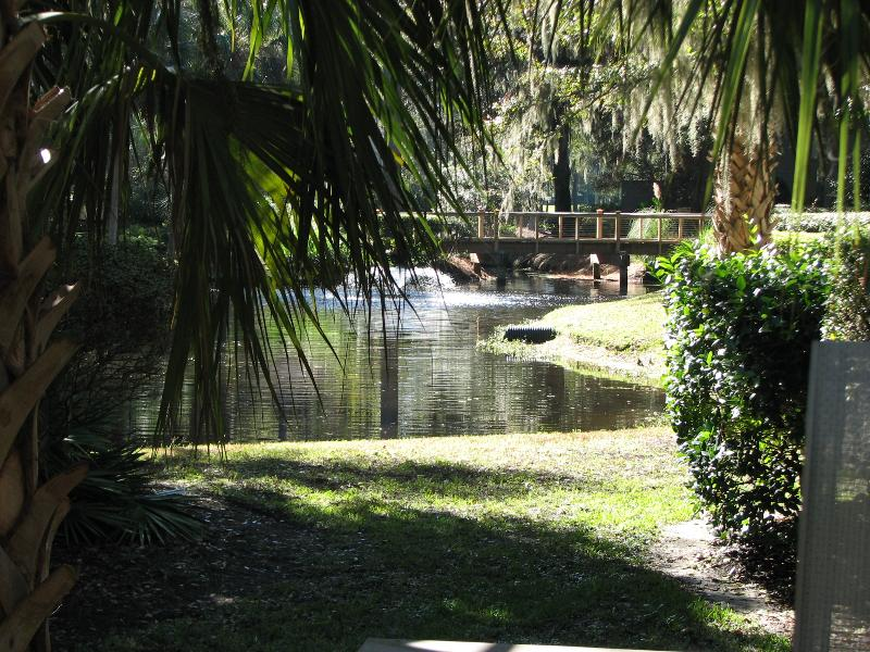 View of lagoon from our deck - Your home away from home over looks lagoon - Hilton Head - rentals