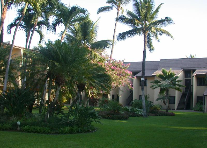 Kihei Garden Estates - Great Kihei Condo only $119/nt! -One Bedroom, Steps to Beach - Kihei - rentals