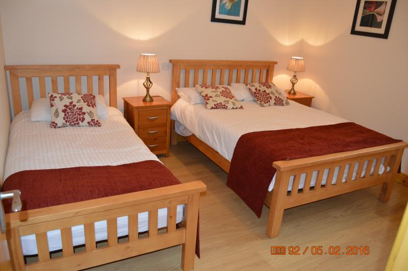 Spacious and comfortable bedroom with a double and a single bed - Beautifully refurbished apt for 5, 10 min to city - Dublin - rentals