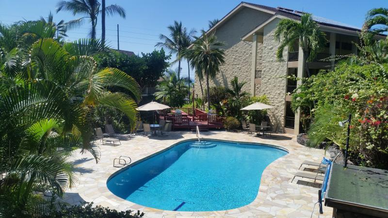 Tropical Paradise - CONVENIENT KAILUA-KONA DOWNTOWN LOCATION - Kailua-Kona - rentals