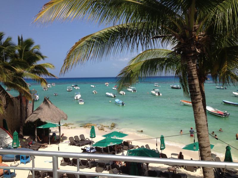 Playa del carmen The Blue Dragonfly Condos - Image 1 - Playa del Carmen - rentals