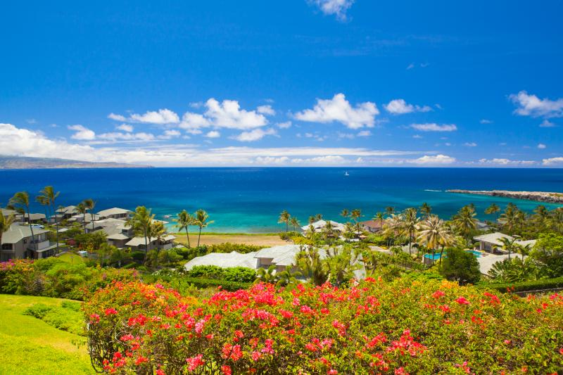 Views, Views,  Views! Oneloa Bay Beach is directly in front of private lanai and just minutes walk - Stunning Ocean Views! Views! Lowest Rates! AC too - Lahaina - rentals