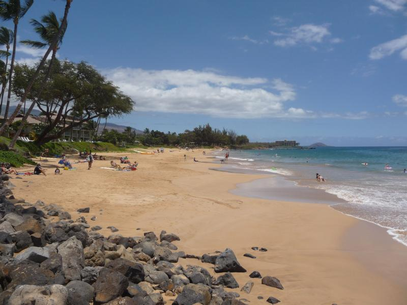 Beautiful Kamaole II beach - 1 BR/1BA (Sleep 4) Kihei Condo by Kamaole II Beach - Kihei - rentals