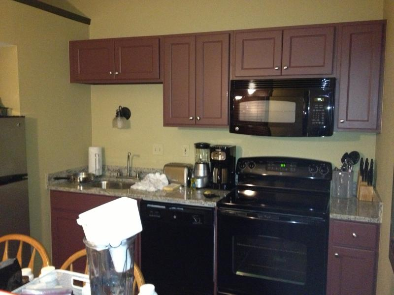Cottage at Christmas Mountain Village Resort - Image 1 - Wisconsin Dells - rentals