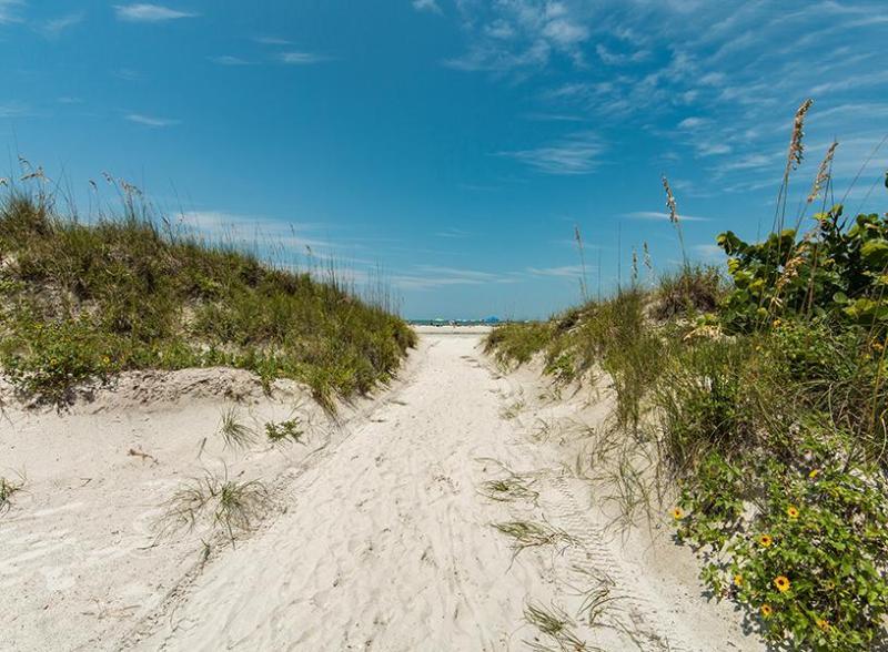 Beachcomber Beach House - Image 1 - Clearwater Beach - rentals