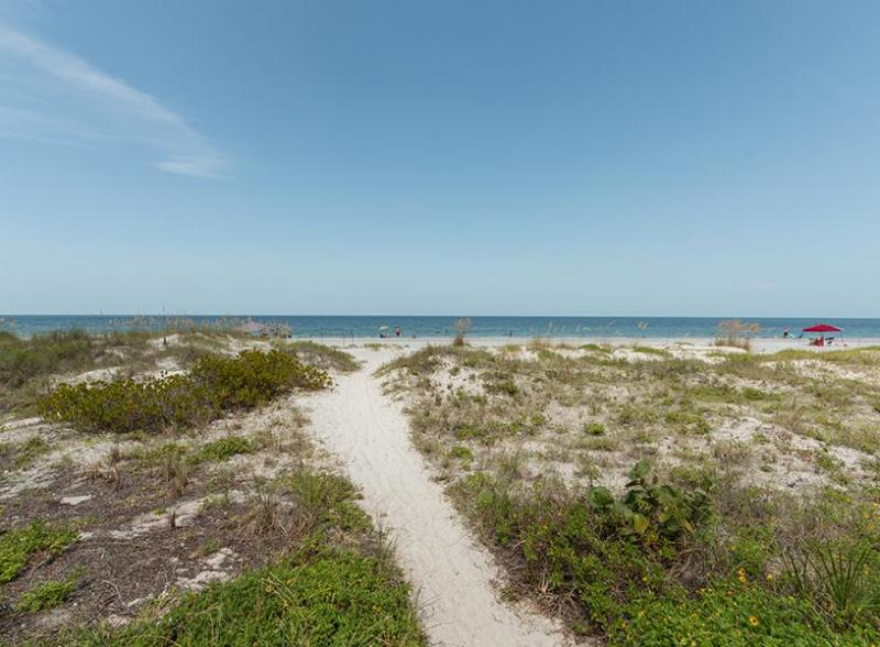Gulf Front Paradise 4A - Image 1 - Indian Shores - rentals