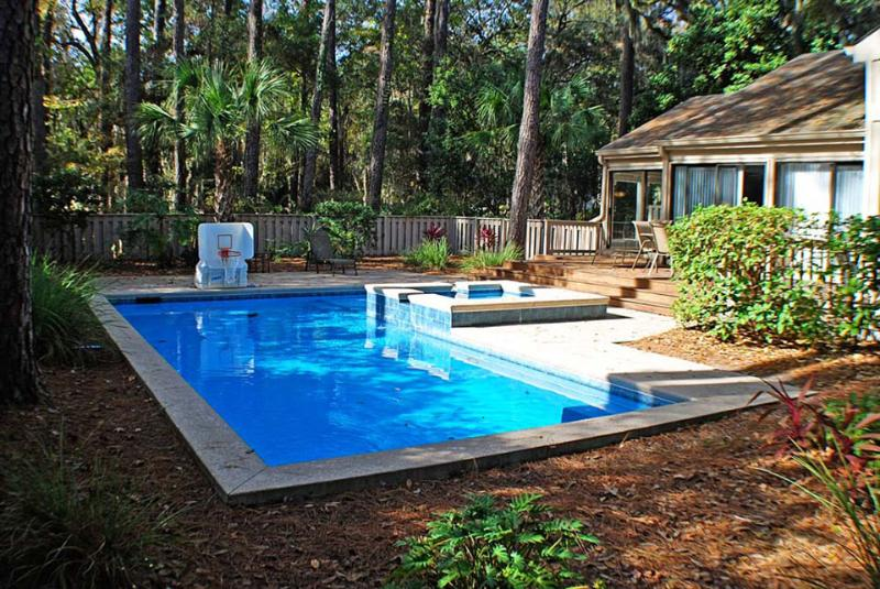 Coastal Haven - Image 1 - Hilton Head - rentals