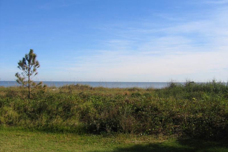 Island Club, 2101 - Image 1 - Hilton Head - rentals
