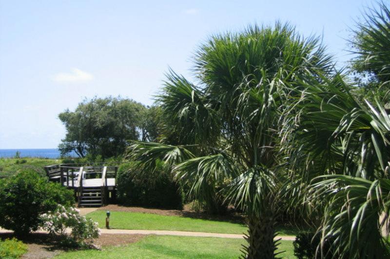 Island Club, 6202 - Image 1 - Hilton Head - rentals