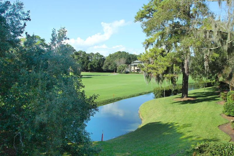 Twin Oaks Villas, 179 - Image 1 - Hilton Head - rentals