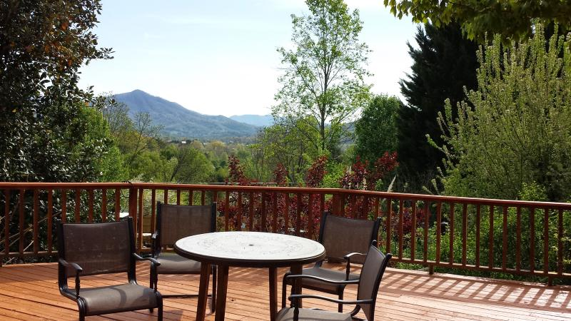 RELAX WITH GREAT VIEWS - FAMILY & FRIENDS MOUNTAIN GETAWAY - Sevierville - rentals