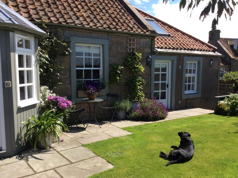 Westbourne Cottage from the garden - with our lovely dog Sam - Westbourne Cottage near St Andrews Fife Scotland - Anstruther - rentals