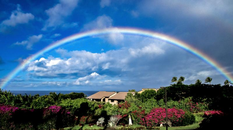 Stop dreaming about it--make your perfect Maui vacation a reality today. - Wailea Ekahi 53D Vacation Luxury Rental - Wailea - rentals