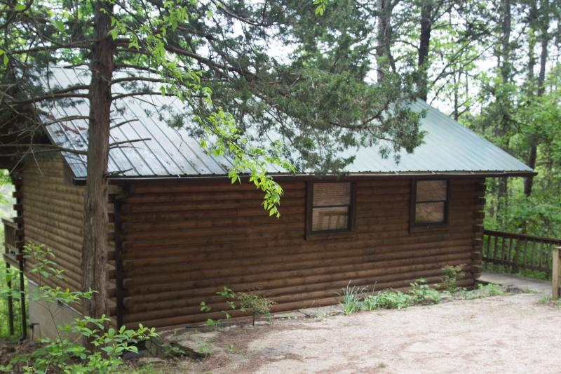 Enchanted Forest Resort: Deluxe Mountain Top Cabin 2 - Image 1 - Eureka Springs - rentals