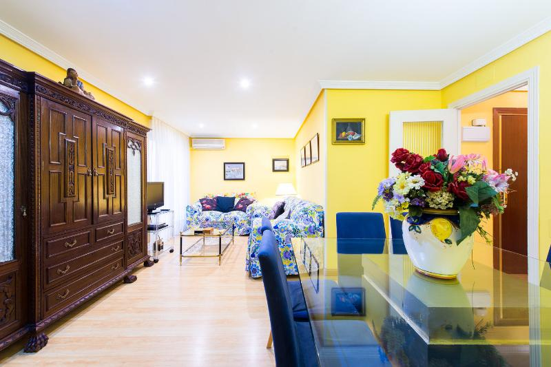 Living Room - Extraordinary flat in Madrid city center - Madrid - rentals