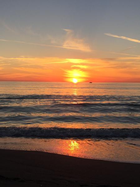 Sunset in paradise - VENICE FLORIDA 2BR 2BA NEAR GOLF AND BEACH - Venice - rentals
