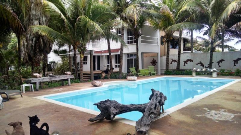 Pool and property - Puerto Morelos 3rd floor, Beach front Apartment - Puerto Morelos - rentals