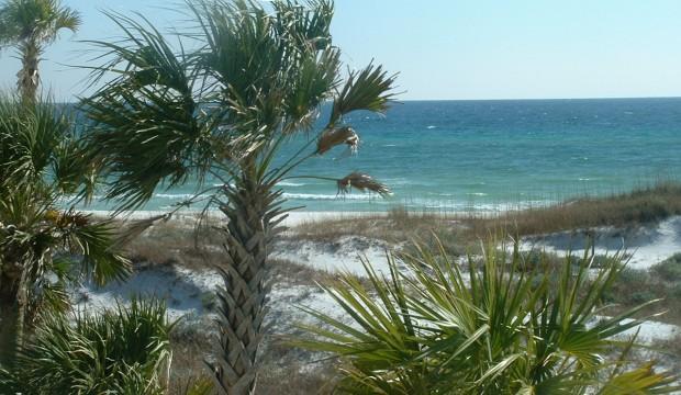 Seasounds 5 - Image 1 - Panama City Beach - rentals