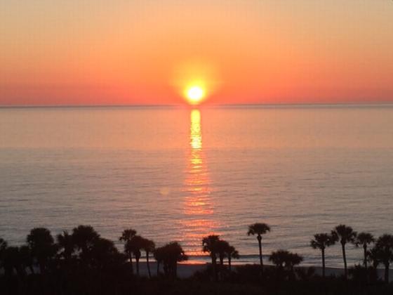 50 Seagate Dr.Naples FL# W803 W803 - Image 1 - Naples - rentals