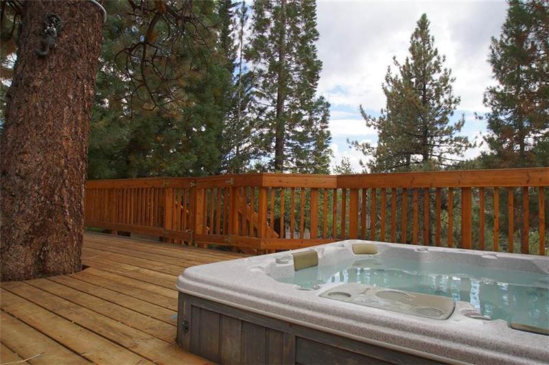 A Breath Of Fresh Air - Image 1 - Big Bear Lake - rentals