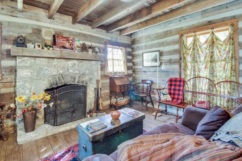 Quiet, dog-friendly cabin with an upscale rustic interior, close to downtown! - Image 1 - Fredericksburg - rentals