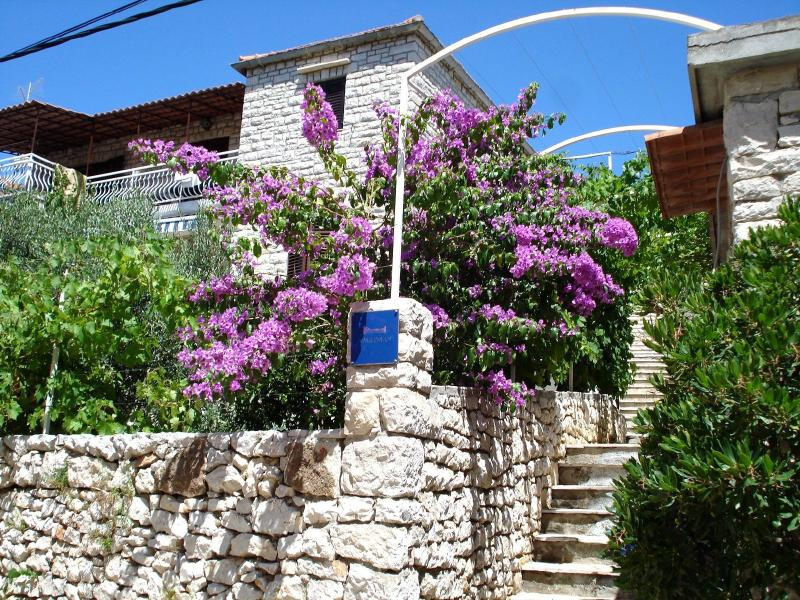 house - 00901MILN  A1(2) - Milna (Brac) - Milna (Brac) - rentals